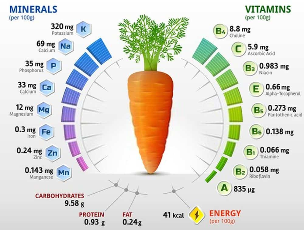 Vitamins and minerals of carrot tuber