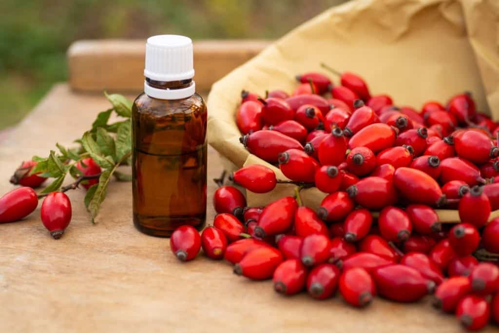 should you store rosehip oil in the fridge