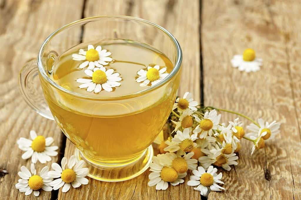 cup of chamomile tea with chamomile flowers