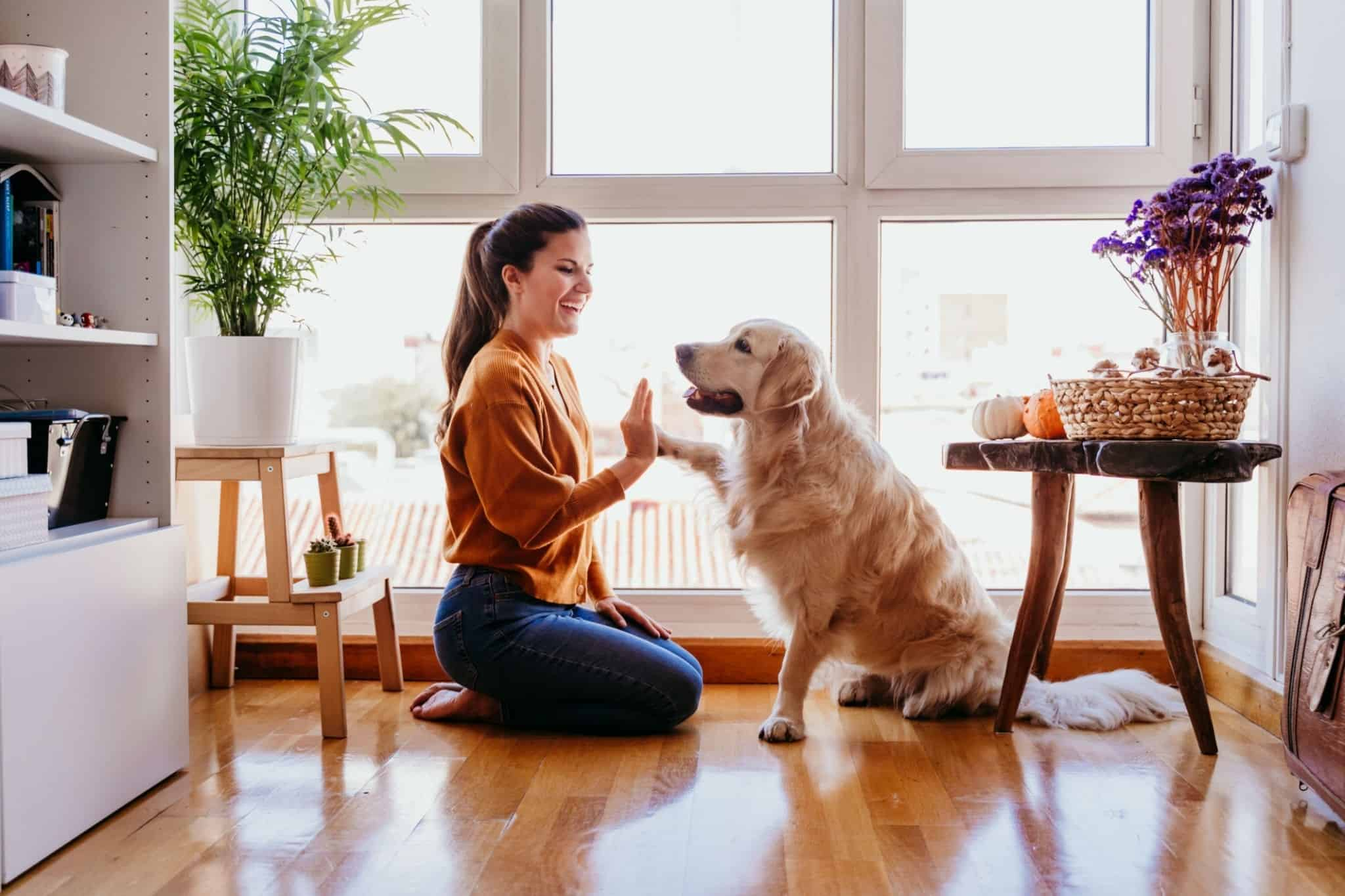 The 4 Best Dog Breeds For Single Women Living Alone
