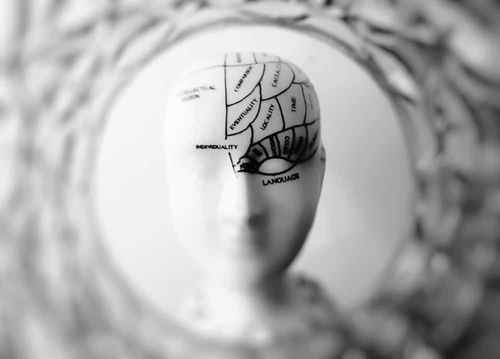 The Surprising Brain Benefits of Playing Poker